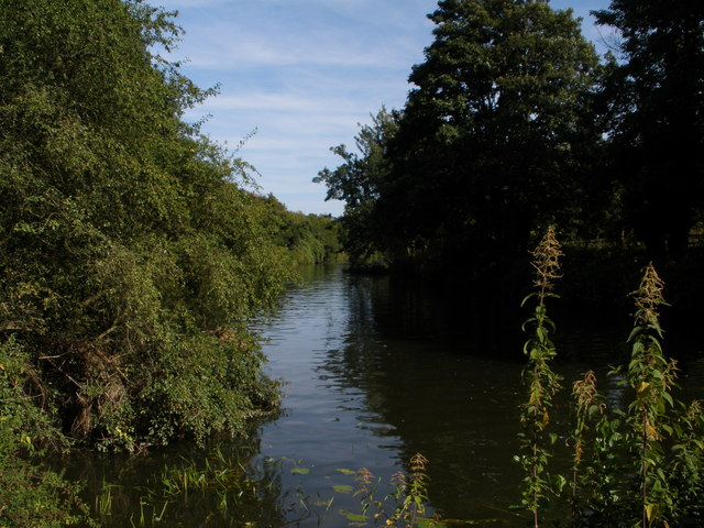 River Medway between East Farleigh and Barming