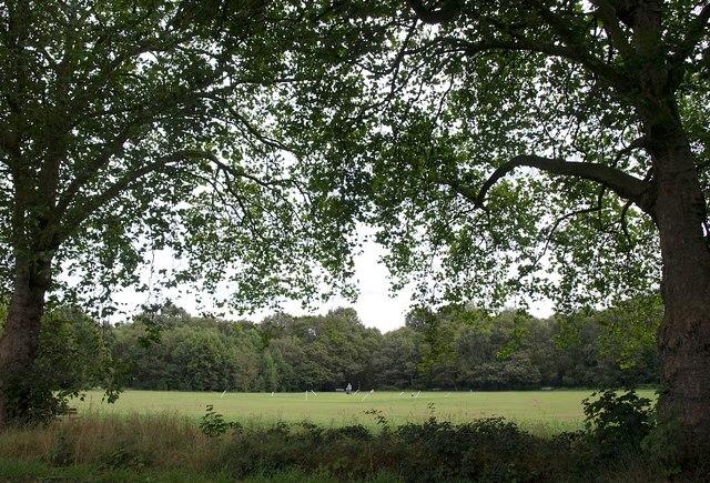 Putney Heath cricket ground
