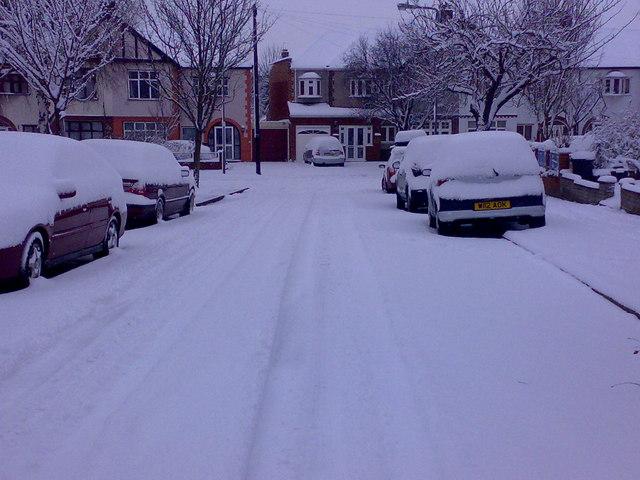 Snow on Middleton Gardens #3