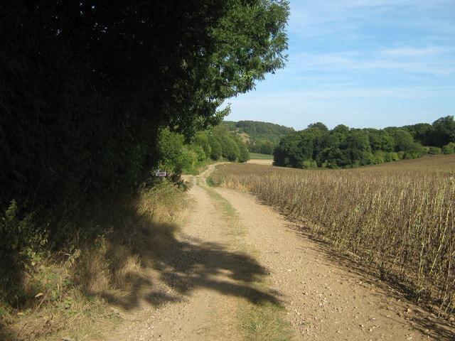 Farm track near Challock Manor Church