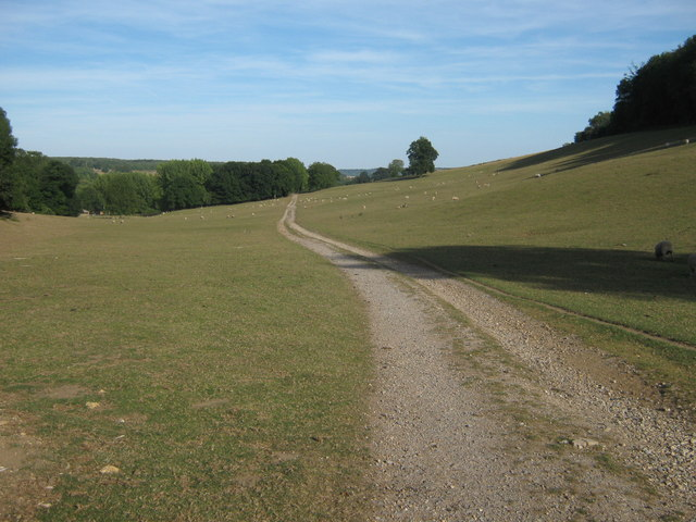 Footpath to Challock Manor