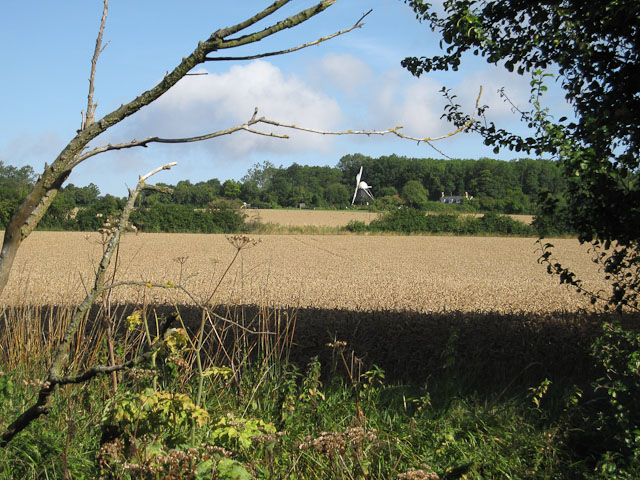 View to West Wratting Windmill