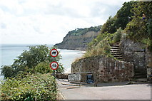 SZ5881 : Shanklin Chine - Path to the Beach by Peter Trimming
