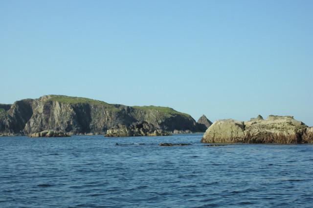 North-west skerries, Flodaigh