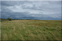 NY0265 : The mudflats looking inland by Ian Greig