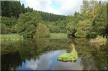 NT2840 : Lower pond at Glentress by Jim Barton