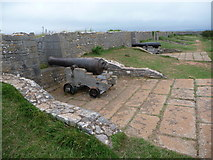 SX9456 : Berry Head: cannon on fort defences by Chris Downer