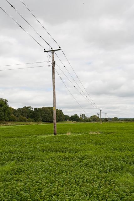 11KV electricity line, south of Harbridge