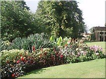 SE2955 : Valley Gardens by Paul Gillett