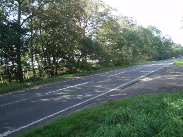 Crag Lane