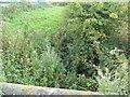 TA1142 : Field Drain, Carr Lane by JThomas