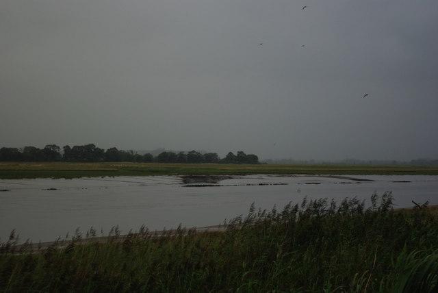 Mudflats at dusk
