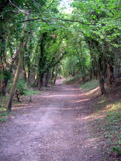 Itchen Way SSW of St Catherine's Hill