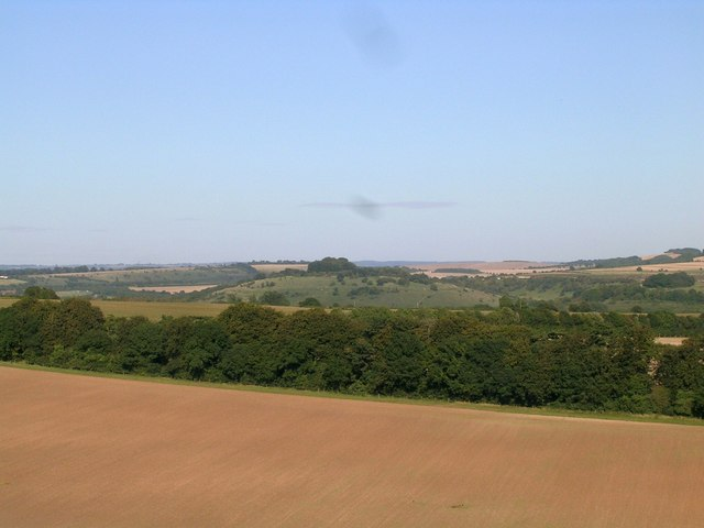 St Catherine's Hill from Compton Down