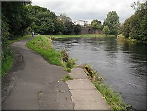 NS3980 : River Leven, Alexandria by Richard Webb