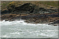 SW9280 : Mussels south of Pentire Point by Andy F