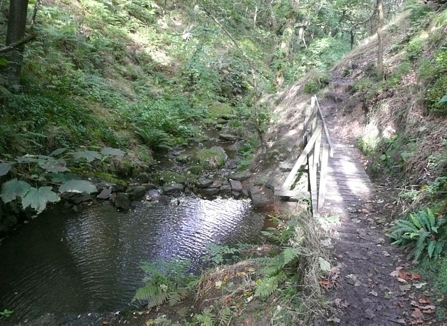 Pool and footbridge, Maple Dean Clough