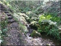 SE0722 : Steps, Maple Dean Clough by Humphrey Bolton