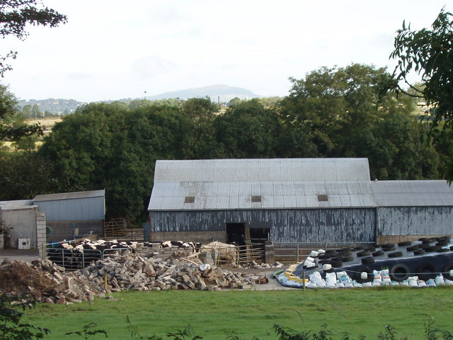Farmyard with cattle near Carrivagoe