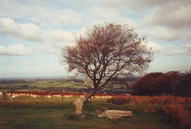 Well and Ancient Cross above Okehampton, Devon