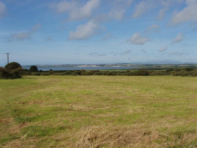 Pasture at Kilmacleague, view to Tramore