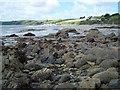 SW9038 : Rocks On Carne Beach by Geoff Pick