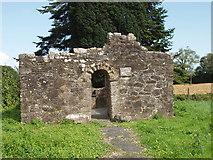S4813 : Kilbunny Church ruins - 8th Century by David Hawgood
