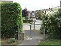 SK5136 : Woodland Grove by Alan Murray-Rust