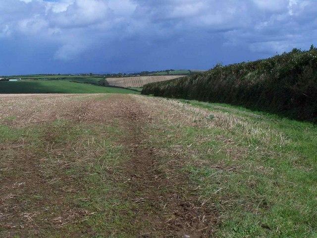 Fields Near Gorran High Lanes