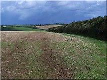 SW9843 : Fields Near Gorran High Lanes by Geoff Pick