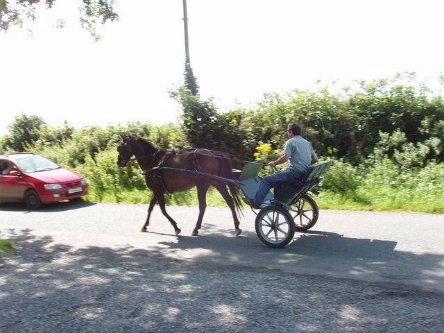 Rural traffic jam near Arderra