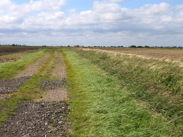 Farm track and ditch, Moulton Fen, Lincs