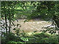 NU2003 : The River Coquet just downstream from a mill weir by Dr Duncan Pepper