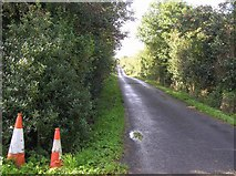 G7353 : Road at Liscally by Kenneth  Allen