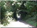 SO6861 : Harpley Lane by Peter Whatley