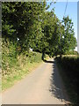 SO6764 : Lane At Lea Green by Peter Whatley
