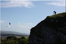 SH7783 : Bird Cliff at Pen-y-Dinas, Great Orme by Richard Kay