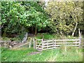 NT9502 : Gate on footpath into Holystone Wood west of Lady's Well by Andrew Curtis