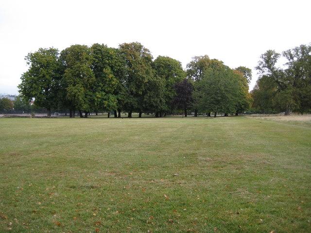Denmark Hill: Ruskin Park, SE5