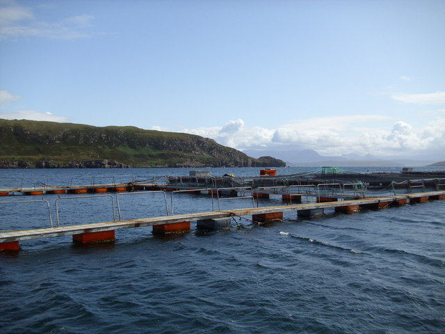 Salmon farming amongst the Summer Isles