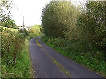 G9135 : Road at Lurgan by Kenneth  Allen