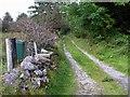 G9141 : Lane, Cashelaveela by Kenneth  Allen