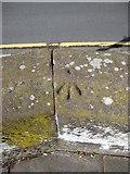 SJ4065 : Rivet bench mark on the city walls by John S Turner