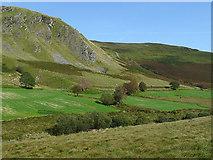 SN8056 : Cwm Tywi north of Llyn Brianne, Powys by Roger  Kidd