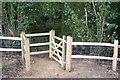 TQ7935 : Kissing Gate on High Weald Landscape Trail by David Anstiss