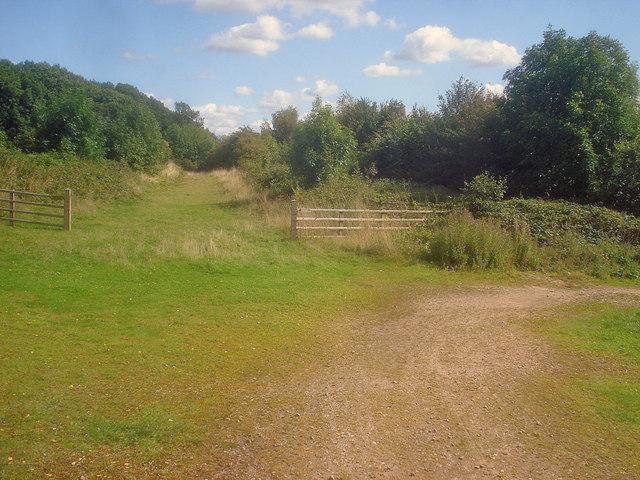Track junction near the A42 bridge
