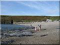SM7931 : Abereiddy beach and sea defences by Pauline E