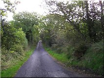H0235 : Road at Monesk by Kenneth  Allen
