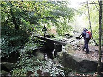 SE0022 : Footbridge over the Cragg Brook by Michael Steele
