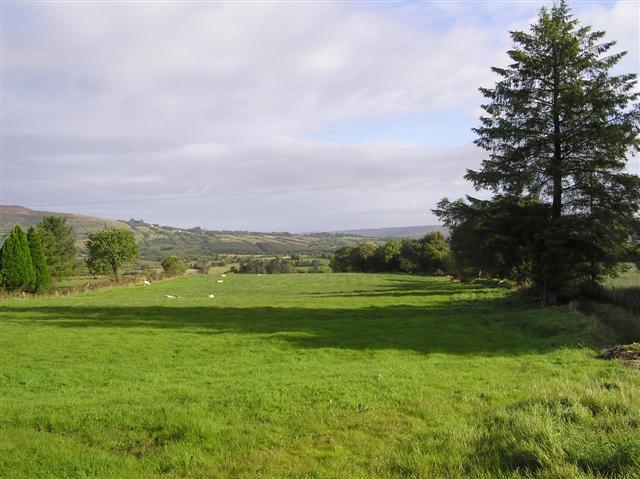 Gubnacurrafore Townland